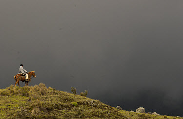 Chagra or cowboy on his horse against dark cloudy sky at a hacienda in the Andes Mountains during the annual cattle round-up, Ecuador  -  Pete Oxford