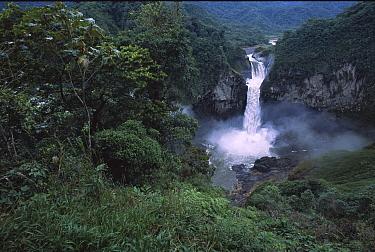 San Rafael or Coca Falls on the Quijos River, Amazon, Ecuador  -  Pete Oxford