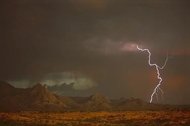 Monsoon rains and lightning over the Santa Rita Mountains, Arizona  -  Tom Vezo