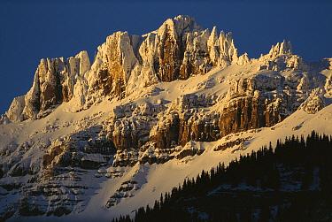 Jagged, snow-covered mountain, Jasper National Park, Alberta, Canada  -  Sumio Harada