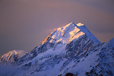 Mt Cook, the highest mountain in New Zealand, at sunset, Mt Cook National Park, New Zealand  -  Mike Langford/ Auscape