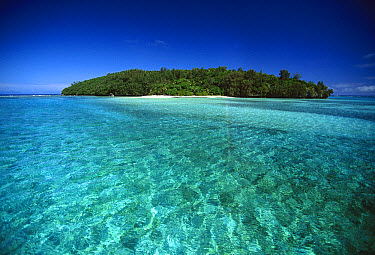 Lua Ui Island, one in the northern archipelago of seventy-one islands in the Vava'u Group, Tonga, South Pacific  -  Jean-Marc La Roque/ Auscape
