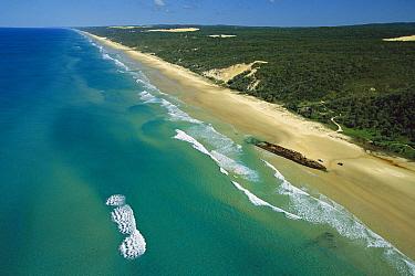 Fraser Island, world's largest sand island, World Heritage Site, Maheno wreck, Australia  -  Jean-Paul Ferrero/ Auscape