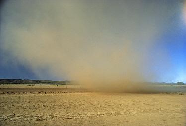 Dust storm near Bronco Bore, Northern Territory, Australia  -  Reg Morrison/ Auscape