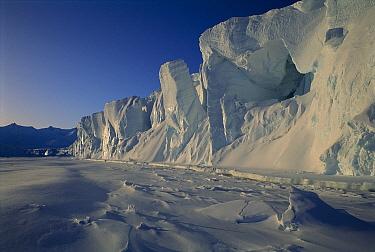 Ice cliffs, Cape Roget, Antarctica  -  Graham Robertson/ Auscape