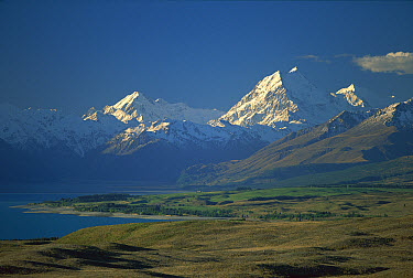 Mt Cook at sunset, Mt Cook National Park, South Island, New Zealand  -  Mike Langford/ Auscape