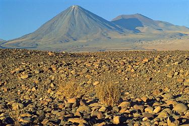 The high elevation arid plains and the towering Licancabur Volcano, near San Pedro de Atacama, Atacama Desert, northern Chile  -  Marianne Porteners/ Auscape