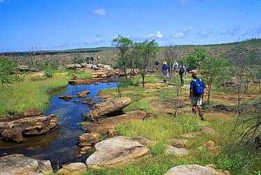 Bush walking near King George Sound, Kimberley region, Western Australia  -  Jaime Plaza Van Roon/ Auscape