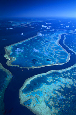 Aerial view of Hardy Reef separated from Hook Reef by a deep channel, Great Barrier Reef Marine Park, Queensland, Australia  -  Jean-Paul Ferrero/ Auscape