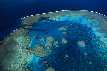 Aerial view of Fitzroy Reef, Capricorn-Bunker group, Great Barrier Reef Marine Park, Queensland, Australia  -  D. Parer & E. Parer-Cook