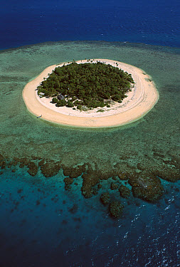 Aerial view of Malamala Island, a coral atoll in the Mamanuca group, Fiji  -  Jean-Paul Ferrero/ Auscape