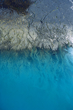 Aerial view of Tasman River waters joining Lake Pukaki, Mt Cook National Park, New Zealand  -  Mike Langford/ Auscape