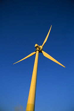 Windmill used in alternative energy, Windy Hill Wind Farm, Ravenshoe, Queensland, Australia  -  Mike Langford/ Auscape