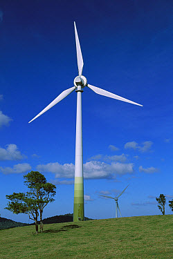 Windmill used in alternative energy, Windy Hill Wind Farm, Ravenshoe, Queensland, Australia  -  Davo Blair/ Auscape