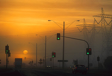 Sunrise visible through air pollution, Princes Highway, Stratford, Victoria, Australia  -  Jean-Marc La Roque/ Auscape