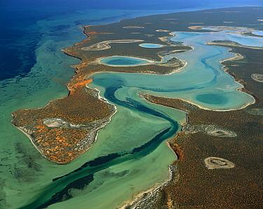 Big lagoon from 4000 feet, Shark Bay, Fran?ois Peron National Park, Western Australia  -  Jean-Paul Ferrero/ Auscape