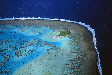 One Tree Island and reef, Capricorn-Bunker group, Great Barrier Reef Marine Park, Queensland, Australia  -  D. Parer & E. Parer-Cook