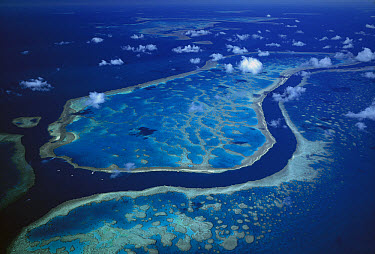 Hardy and Hook Reefs separated by deep channel, Great Barrier Reef Marine Park, Queensland, Australia  -  Jean-Paul Ferrero/ Auscape