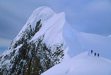 Climbers on summit ridge of Mt Scott after climbing from sea level, Antarctic Peninsula, Antarctica  -  Colin Monteath/ Hedgehog House