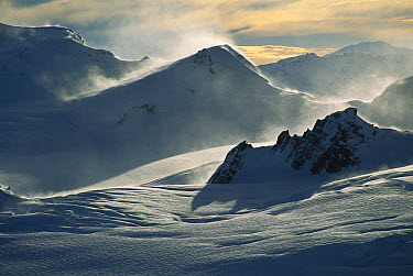 Windblown snow at dawn on the Franz Josef Glacier, winter, Westland National Park, Southern Alps, New Zealand  -  Colin Monteath/ Hedgehog House