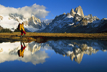 Hiker, Cerro Torre and Fitzroy reflected in small pond at dawn, Loma Plieque Tumbado, Los Glaciares National Park, Patagonia, Argentina  -  Colin Monteath/ Hedgehog House