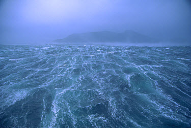 Storm with 80 knot winds in Drake Passage in the Southern Ocean off of Cape Horn, Chile  -  Colin Monteath/ Hedgehog House