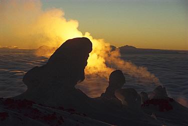 Steaming fumaroles at sunset, Mt Erebus, Ross Island, Antarctica  -  Colin Monteath/ Hedgehog House