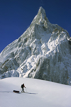 Skier passing iced-up rock spire, Baltoro Glacier, Karakoram Mountains, Pakistan  -  Colin Monteath/ Hedgehog House