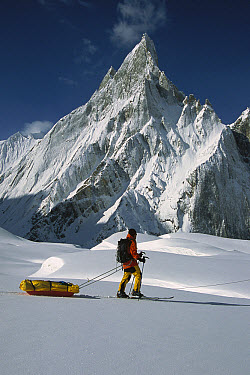 Skier passing icy Mitre Peak, Baltoro Glacier, Karakoram Mountains, Pakistan  -  Colin Monteath/ Hedgehog House