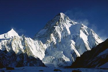 K2 at dawn (8,611 meters) seen from camp below Broad Peak, Godwin Austen Glacier, Karakoram Mountains, Pakistan  -  Colin Monteath/ Hedgehog House