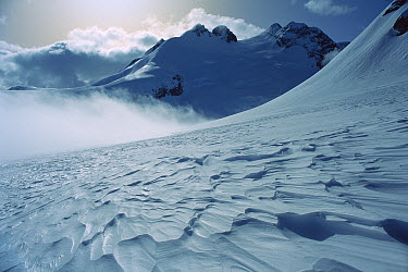 Mt Farrar (2,433 meters) above the Garden of Eden, evening, Southern Alps, New Zealand  -  Nick Groves/ Hedgehog House