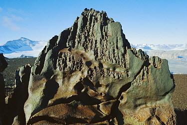 Dolerite ventifact on Mt Bastion, Olympus Range, dry valleys, Transantarctic Mountains, Antarctica  -  Colin Monteath/ Hedgehog House