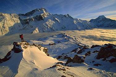 Mt Sefton, climber at dawn above Mueller hut and cloud-filled Mueller Glacier, Mt. Cook, also called Aoraki, in the distance, Mt. Cook National Park, New Zealand  -  Colin Monteath/ Hedgehog House