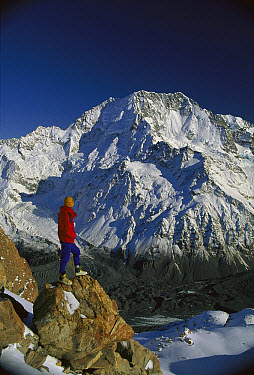 Hiker looking at Mt Cook, known locally as Aoraki, from Malte-Brun, Southern Alps, New Zealand  -  Colin Monteath/ Hedgehog House