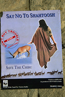 Shahtoosh poster discouraging killing Chiru for their highly prized wool, World Wildlife Federation, Ladakh, northwest India  -  Colin Monteath/ Hedgehog House