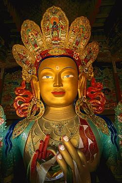 Maitreya statue, Buddha, Tikse Monastery, Ladakh, India, Himalayas  -  Colin Monteath/ Hedgehog House