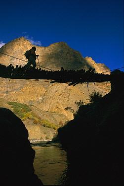 Trekker crossing Hanumar Bridge, near Zanskar Gorge, Kingdom of Zanskar, Himalayas, northwest India  -  Colin Monteath/ Hedgehog House