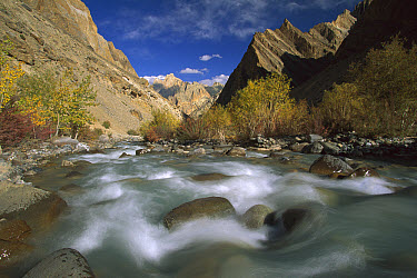 Hanupata River Gorge, Ladakh, northwest India, Himalaya  -  Colin Monteath/ Hedgehog House