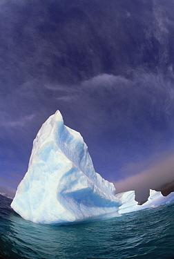 Iceberg adrift near South Orkney Islands, Antarctica  -  Colin Monteath/ Hedgehog House