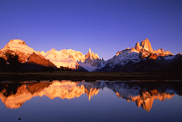 Cerro Torre, centre, and Mount FitzRoy, right, Cerro Solo, left, at dawn famous peaks on edge of Patagonian icecap, Los Glaciares National Park, Patagonia, Argentina  -  Colin Monteath/ Hedgehog House