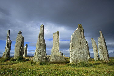 Callanish standing stones, Isle of Lewis, Outer Hebrides Islands, Scotland  -  Colin Monteath/ Hedgehog House