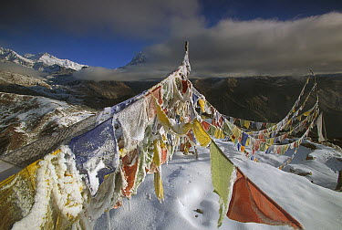 Iced up prayer flags, Dzong Ri, 8595 meters, Kangchenjunga in distance, most easterly of the world's fourteen 8000 metre peaks, Sikkim Himalaya, India  -  Colin Monteath/ Hedgehog House