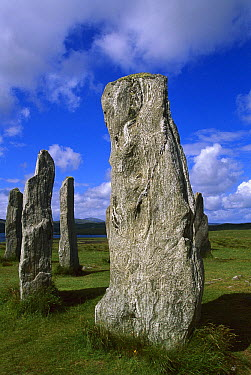 Callanish standing stones, Isle of Lewis, Outer Hebrides, Scotland  -  Colin Monteath/ Hedgehog House