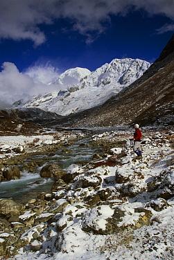 Trekker under Kabru Peak (7300 m) in winter snow, from Rathong Chu, near Kangchenjunga, Sikkim Himalaya, India  -  Colin Monteath/ Hedgehog House