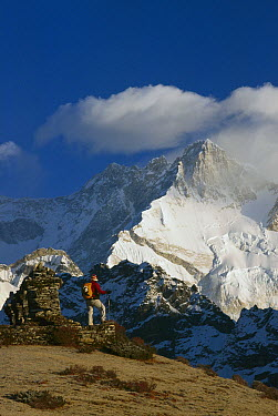 Trekker beneath Kangchenjunga, Talung face from Dzong Ri, 8585 meters, most easterly of the world's fourteen 8000 metre peaks, Sikkim Himalaya, India  -  Colin Monteath/ Hedgehog House