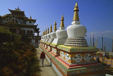 Zangdok Palrifo Brang Gompa, tourist among chortens, Kalimpong, Sikkim Himalaya, India  -  Colin Monteath/ Hedgehog House