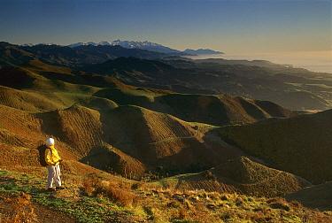 Trekker at dawn, Kaikoura Walkway, Seaward Kaikoura Mountains behind, New Zealand  -  Colin Monteath/ Hedgehog House