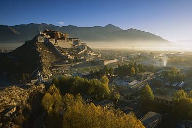 Potala Palace, World Heritage Site, exiled Dalai Lama's winter palace, autumn light at dawn, Lhasa, the capital of Tibet  -  Colin Monteath/ Hedgehog House