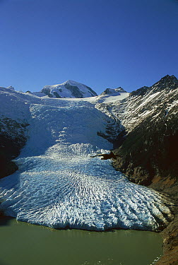 Frances Glacier, Tierra del Fuego, Chile  -  Colin Monteath/ Hedgehog House