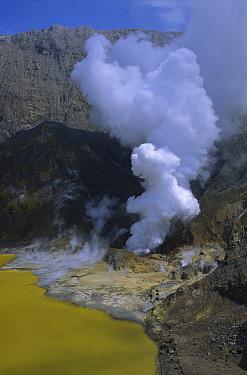 Active volcanic vent 90 meters below sea level, White Island, Bay of Plenty, New Zealand  -  Harley Betts/ Hedgehog House